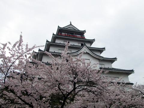 石部桜⑬.JPG